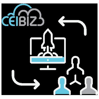 CeiBiz Services 01