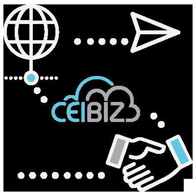 CeiBiz Services 02