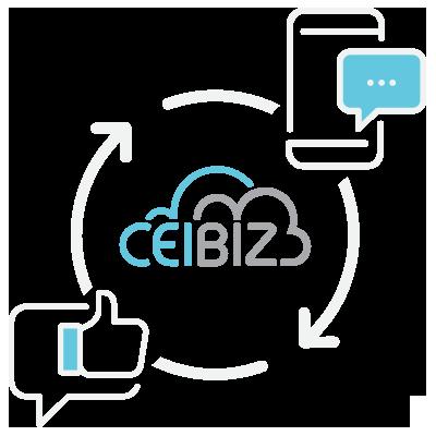 CeiBiz Services 03