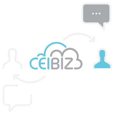 CeiBiz Services 04